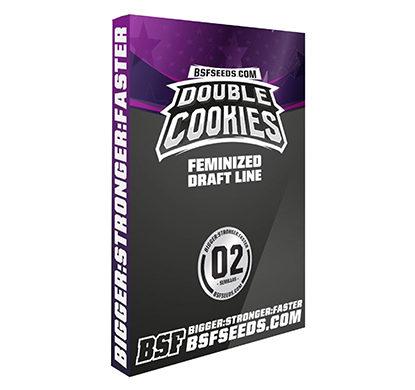 double-cookies-feminized-seeds-uk