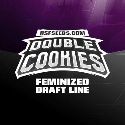 double-cookies-marijuana-seeds-feminized