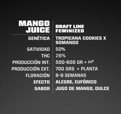 Mango Juice THC Seeds Proprieties