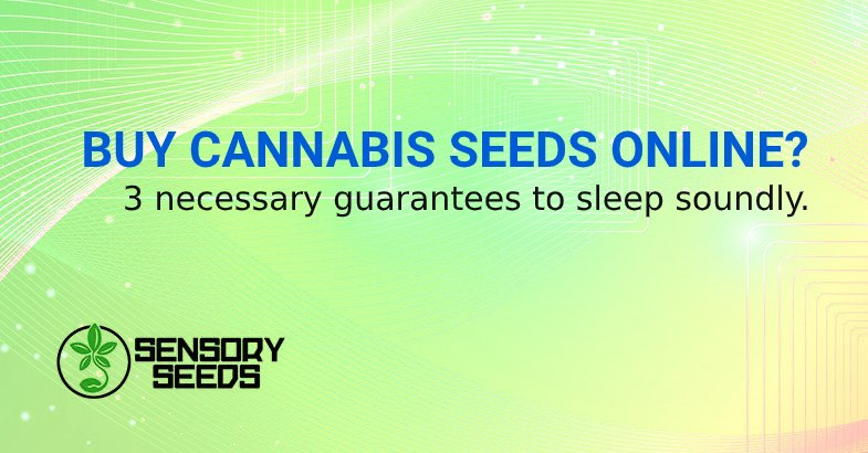 IS IT SAFE TO BUY CANNABIS SEEDS ONLINE